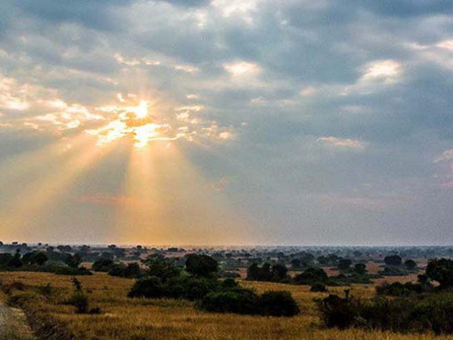 Book 4 days Masai Mara Safari,Lake Nakuru tour