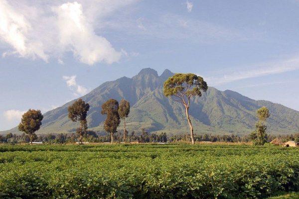 Volcanoes NP-Rwanda